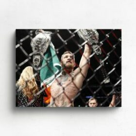 UFC Canvas Prints